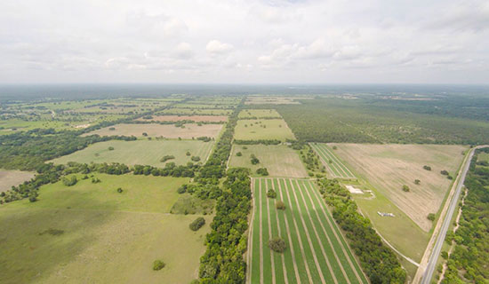Floral City RanchStrahan teamed with Jack Koehler to represent the Seller on 1,776 acres of farmland in Floral City (Citrus County). The Buyer was a local farmer who will grow watermelons and graze cattle. Property sold for $6,420,900.